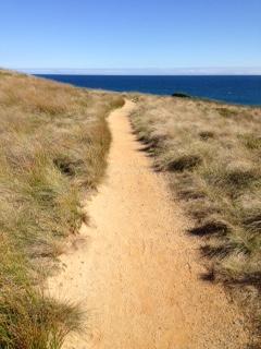 Phillip Island File