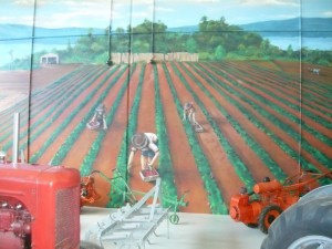 Farm mural and display at the Redland Museum