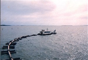Coral Dredge in Raby Bay (photo courtesy Ralph Munro)