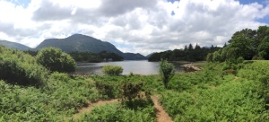The View from Muckross House