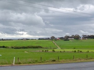 A farm at Phillip Island