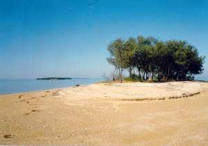Bird Island in 1992 (it is now just a sandbank exposed only at low tide)