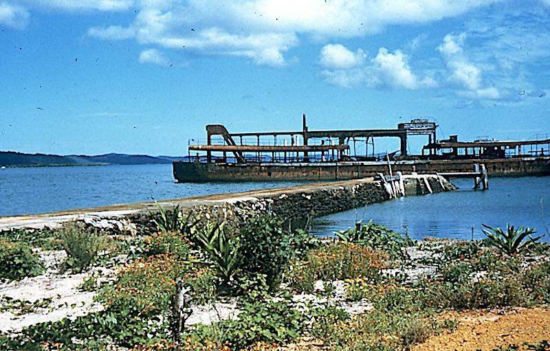 Peel Island's Platypus – the IncredibleHulk